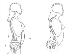 Modificaciones en los pies durante el embarazo